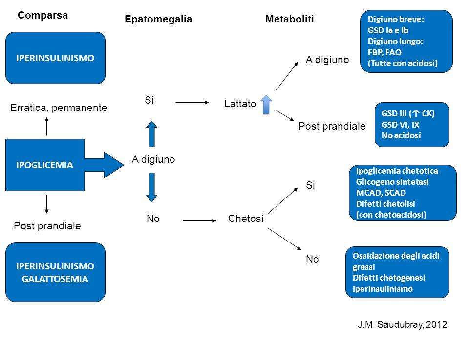 IPERINSULINISMO IPOGLICEMIA IPERINSULINISMO GALATTOSEMIA