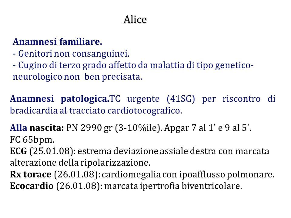 Alice Anamnesi familiare. - Genitori non consanguinei.