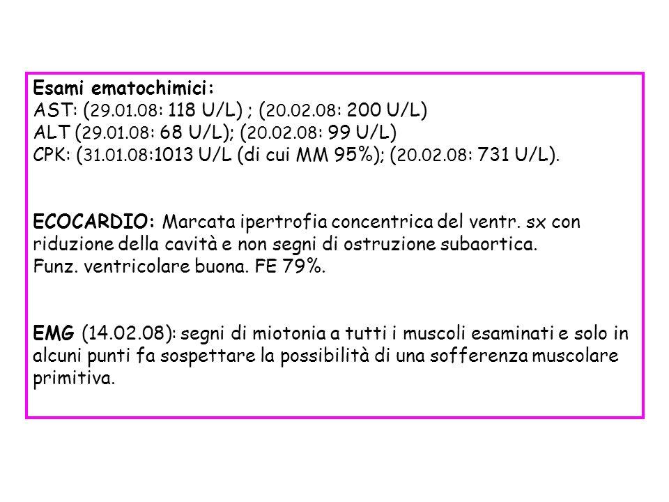 Esami ematochimici: AST: (29.01.08: 118 U/L) ; (20.02.08: 200 U/L) ALT (29.01.08: 68 U/L); (20.02.08: 99 U/L)