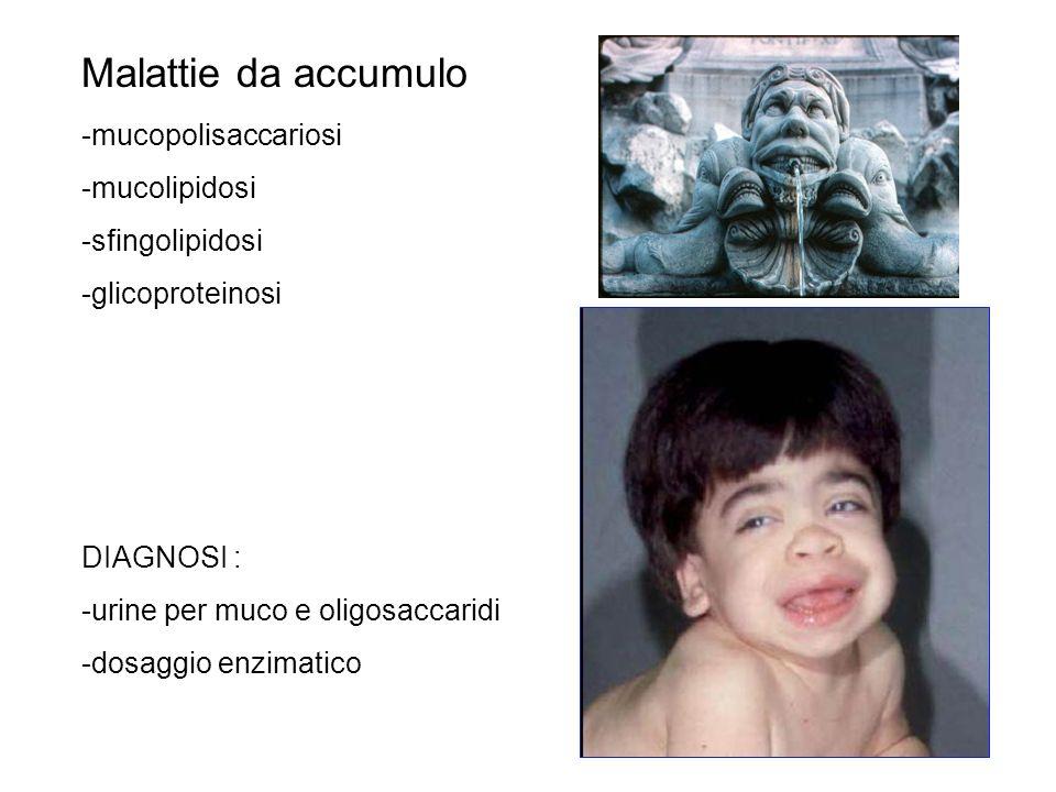 Malattie da accumulo -mucopolisaccariosi -mucolipidosi -sfingolipidosi
