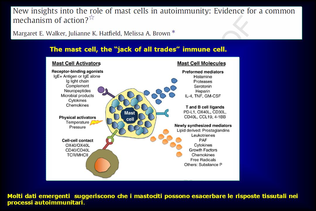 The mast cell, the jack of all trades immune cell.