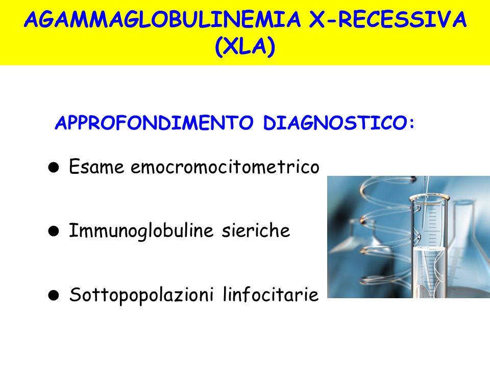 AGAMMAGLOBULINEMIA X-RECESSIVA (XLA)