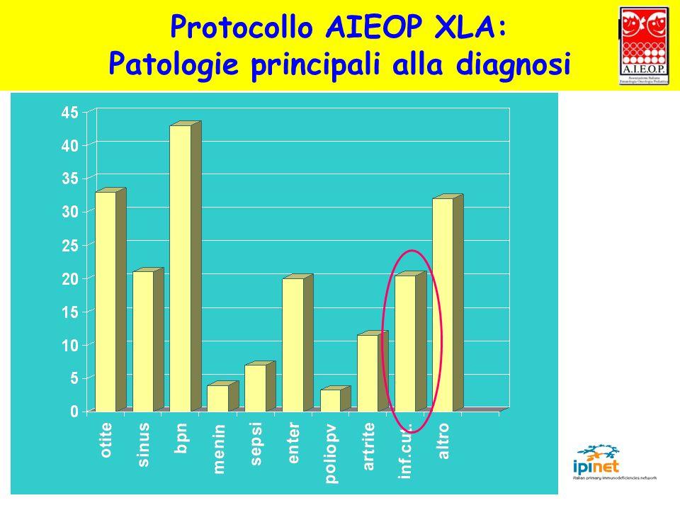 Patologie principali alla diagnosi