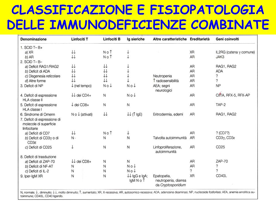 CLASSIFICAZIONE E FISIOPATOLOGIA DELLE IMMUNODEFICIENZE COMBINATE