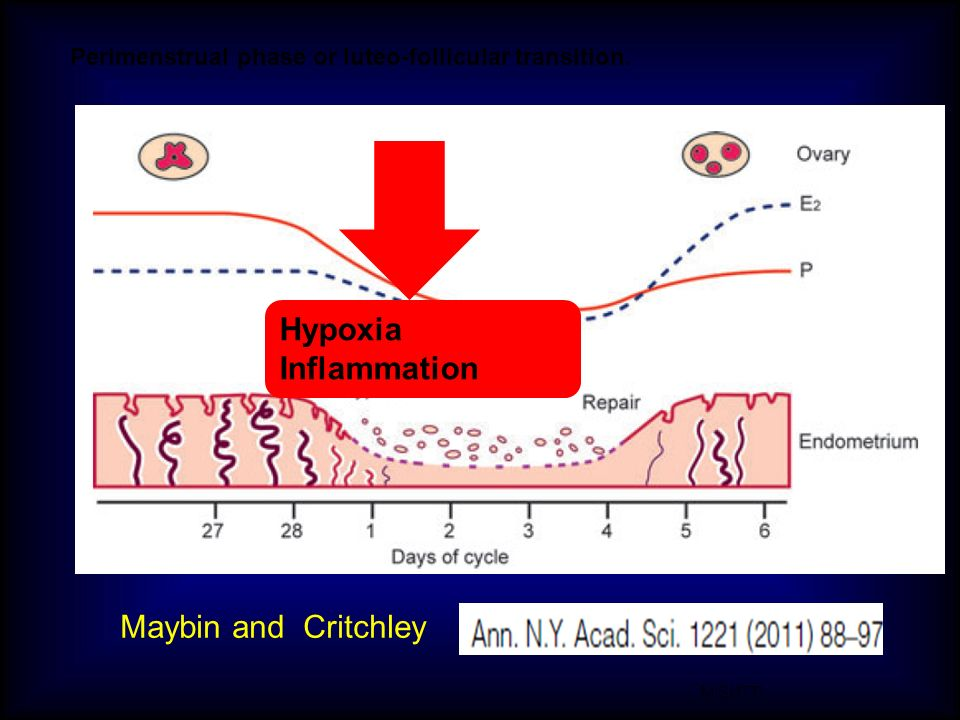 Hypoxia Inflammation Maybin and Critchley