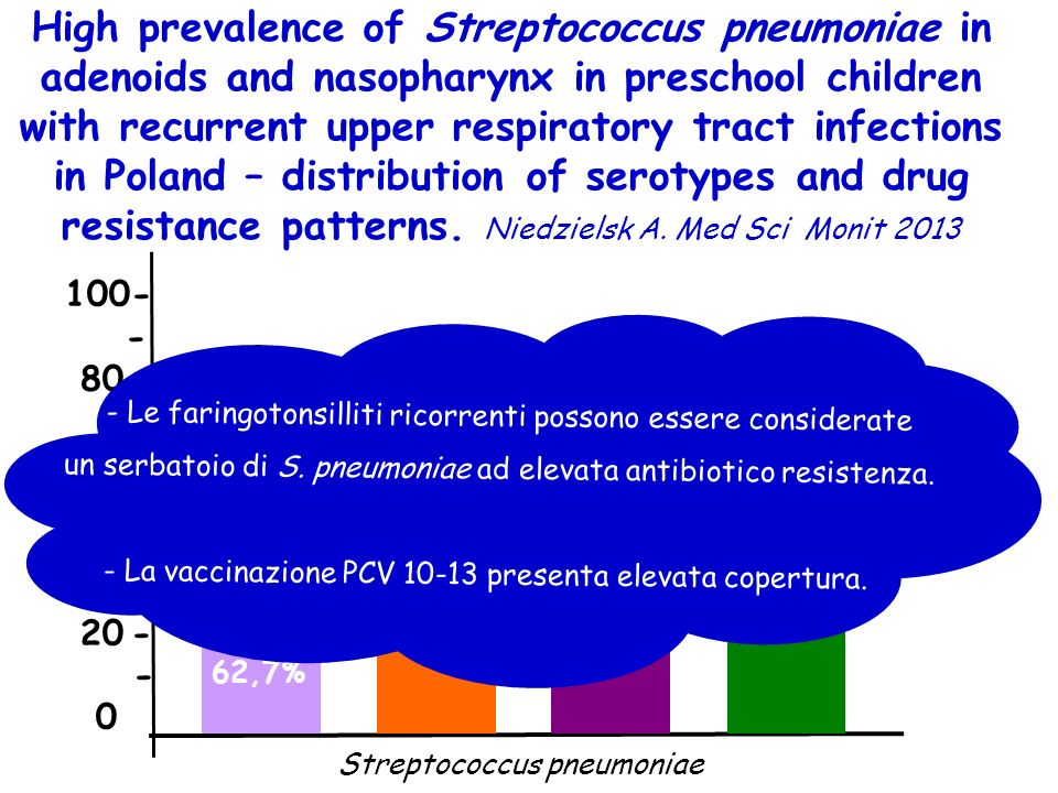 High prevalence of Streptococcus pneumoniae in