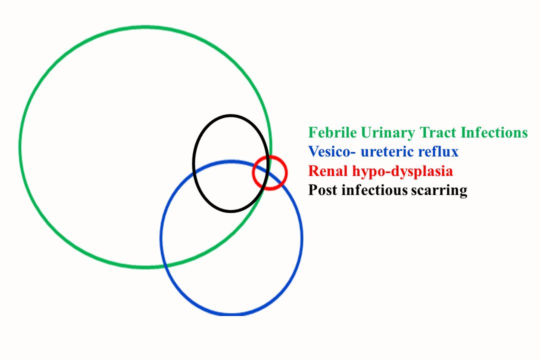 Febrile Urinary Tract Infections