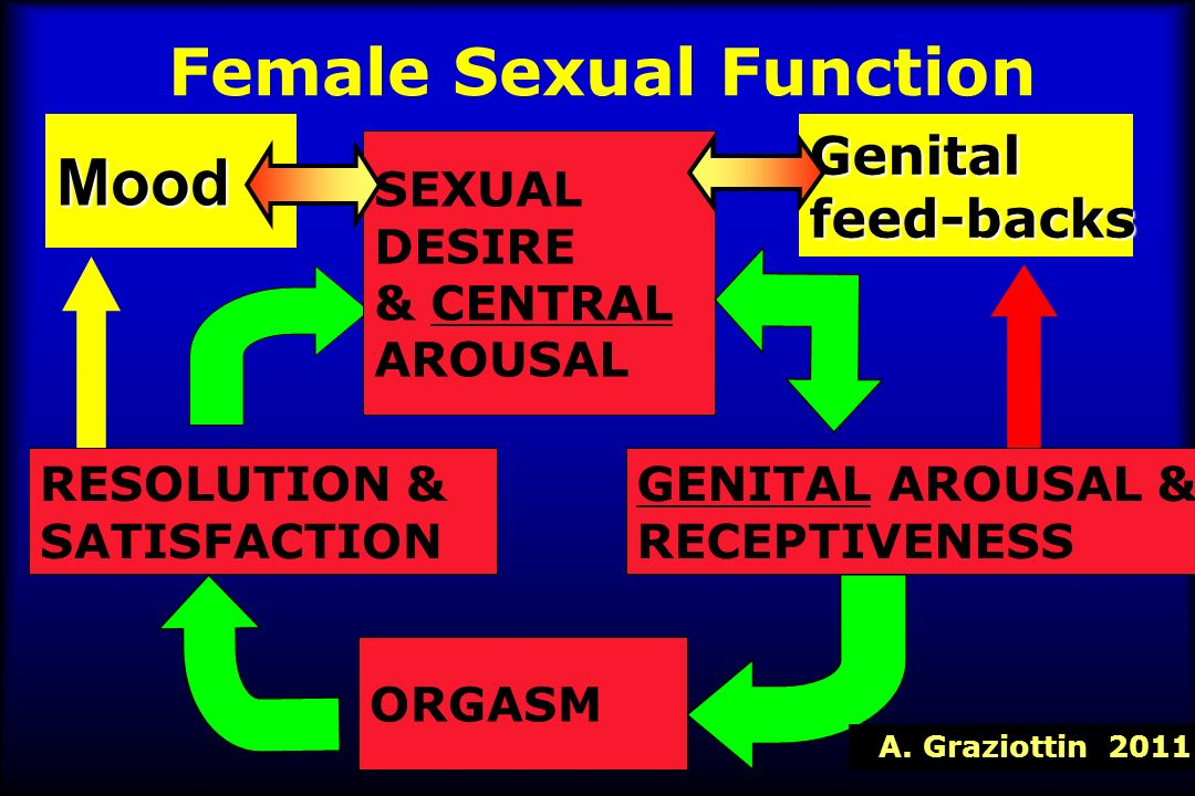 Female Sexual Function