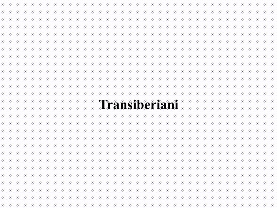 Transiberiani