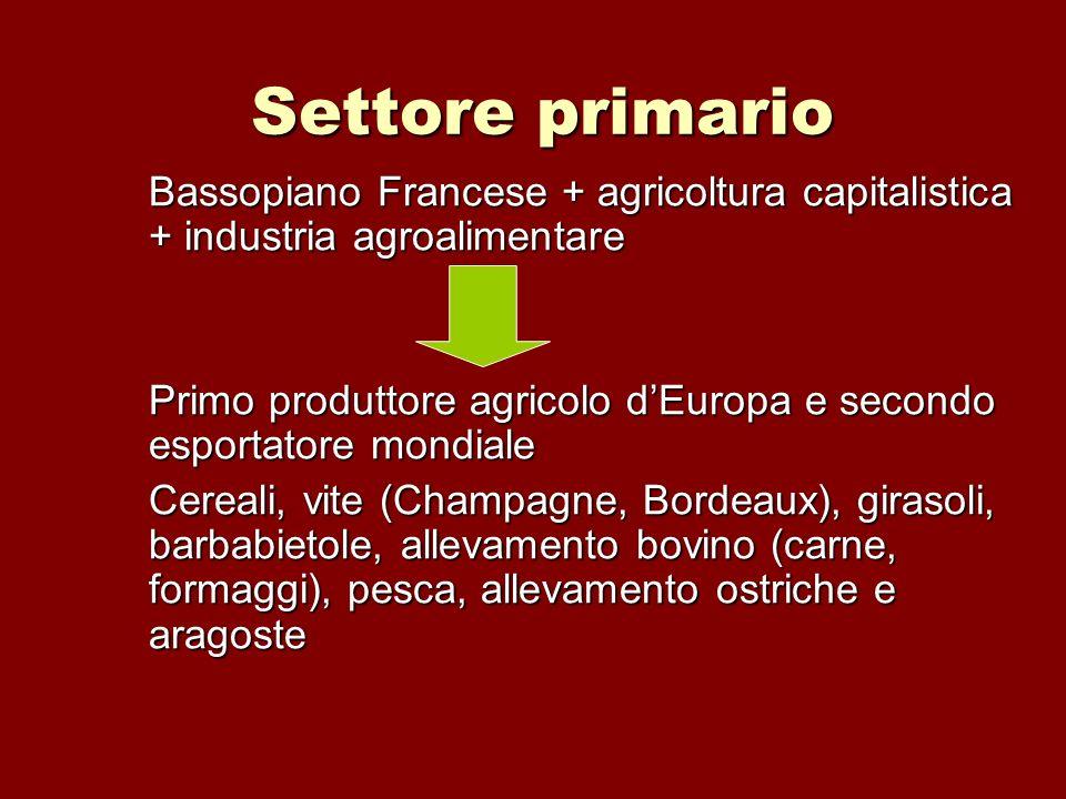 Settore primario Bassopiano Francese + agricoltura capitalistica + industria agroalimentare.