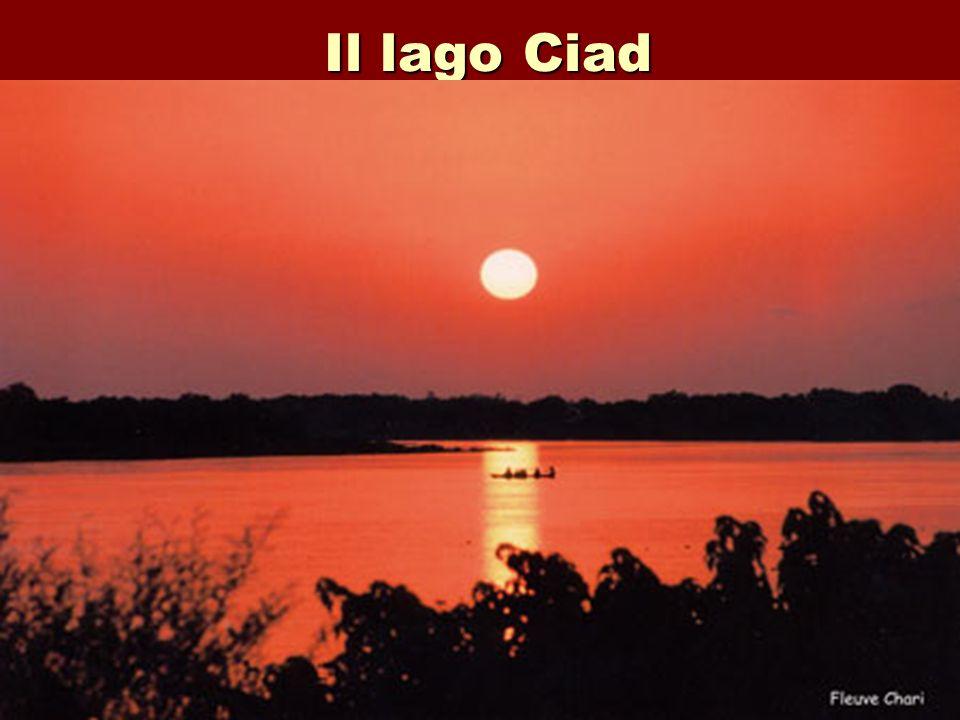 Il lago Ciad
