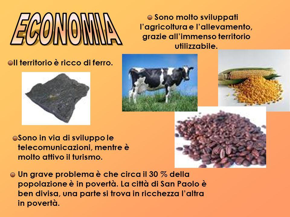 Sono molto sviluppati l'agricoltura e l'allevamento, grazie all'immenso territorio utilizzabile.