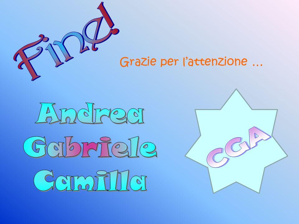 Fine! Grazie per l'attenzione … Andrea Gabriele Camilla CGA
