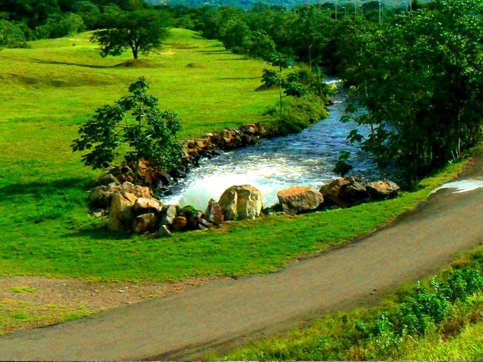 La cascata Angelo!Laguna di Canaima. Parchi. Città. Guayana. Tepui!
