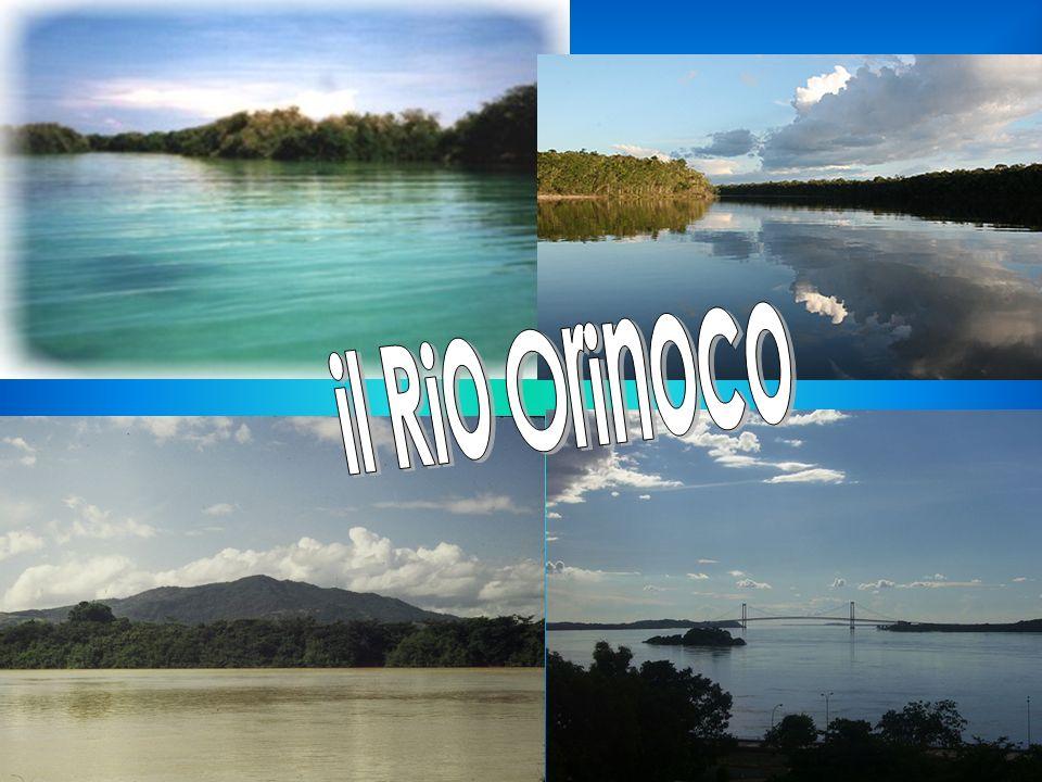 il Rio Orinoco