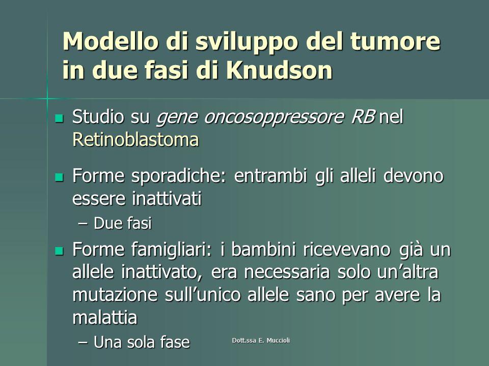Modello di sviluppo del tumore in due fasi di Knudson