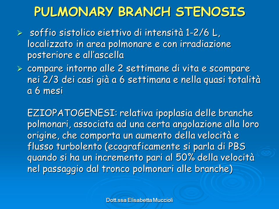 PULMONARY BRANCH STENOSIS