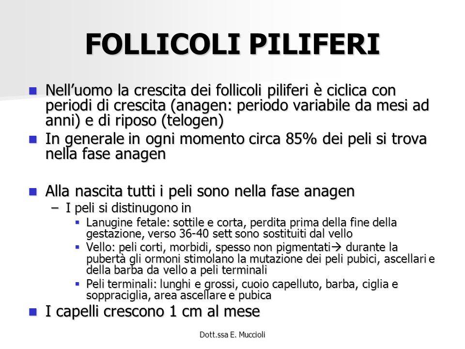 FOLLICOLI PILIFERI