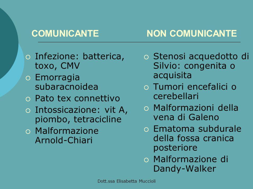 COMUNICANTE NON COMUNICANTE
