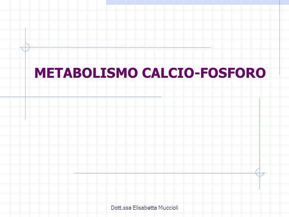 METABOLISMO CALCIO-FOSFORO
