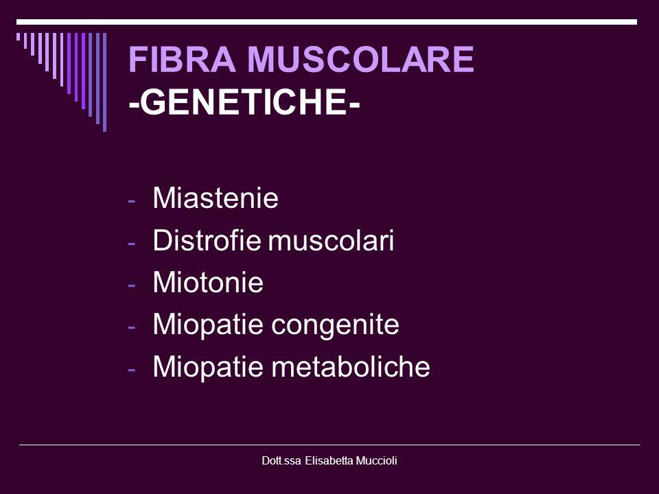 FIBRA MUSCOLARE -GENETICHE-