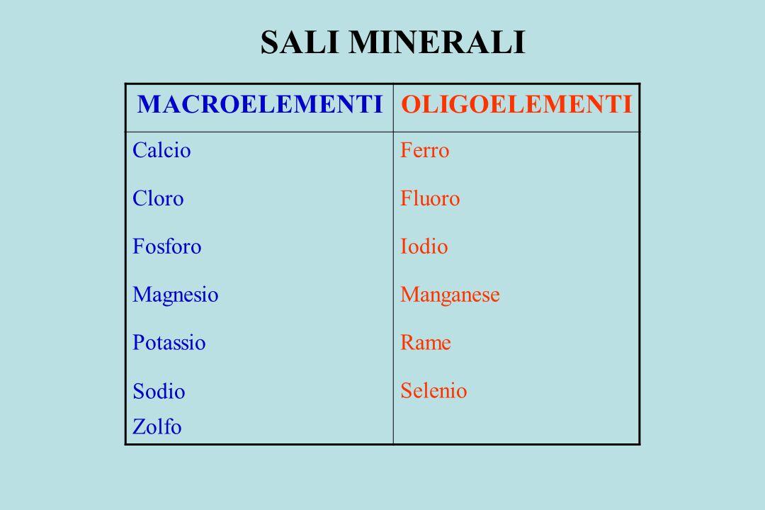 SALI MINERALI MACROELEMENTI OLIGOELEMENTI Calcio Ferro Cloro Fluoro