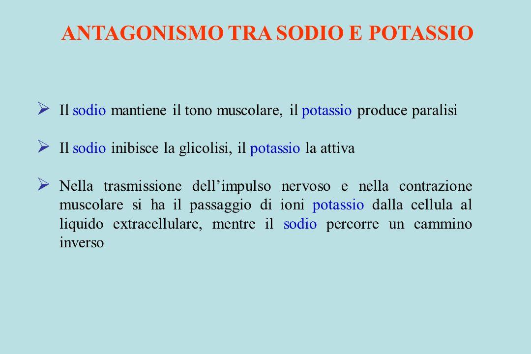 ANTAGONISMO TRA SODIO E POTASSIO