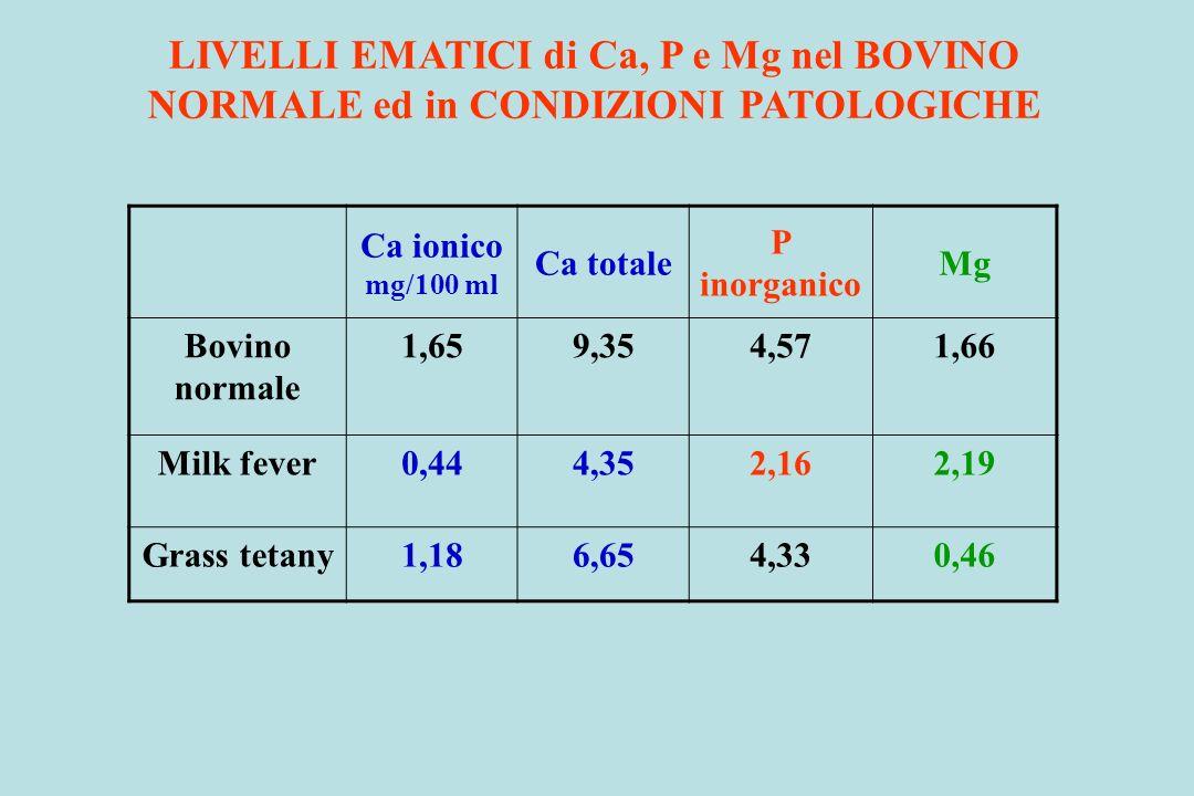LIVELLI EMATICI di Ca, P e Mg nel BOVINO
