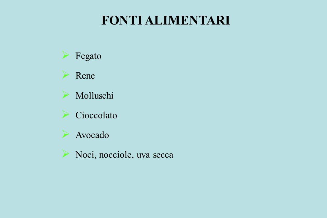 FONTI ALIMENTARI Fegato Rene Molluschi Cioccolato Avocado
