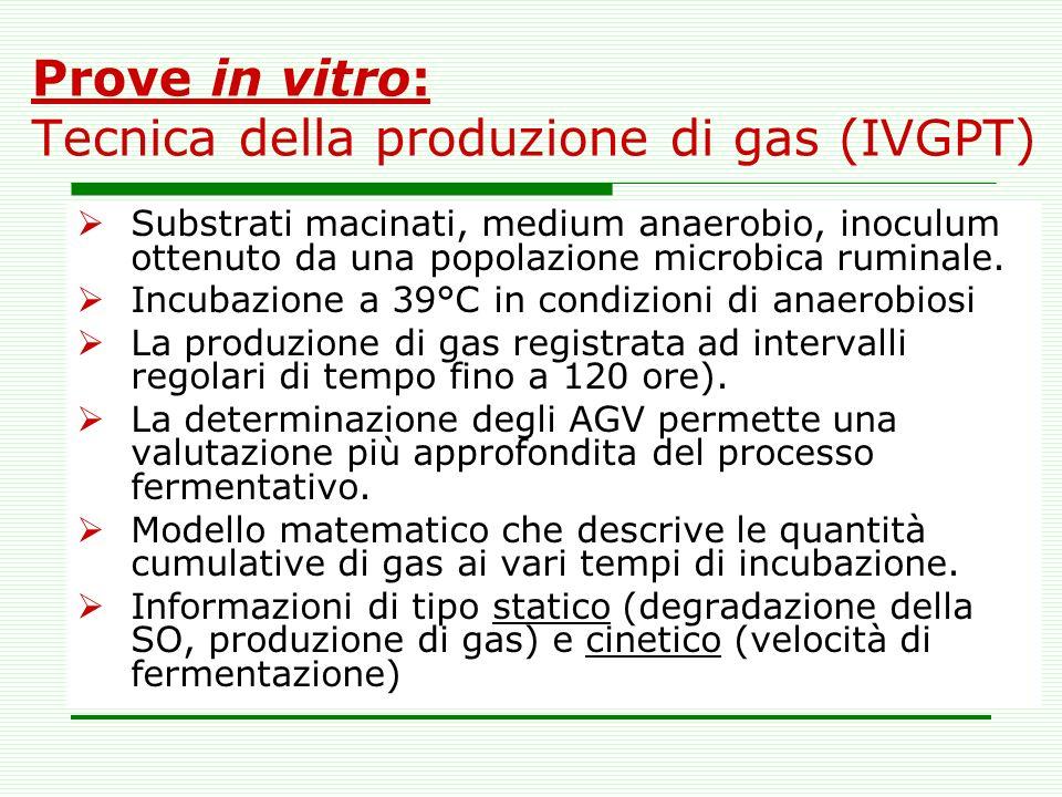 Prove in vitro: Tecnica della produzione di gas (IVGPT)