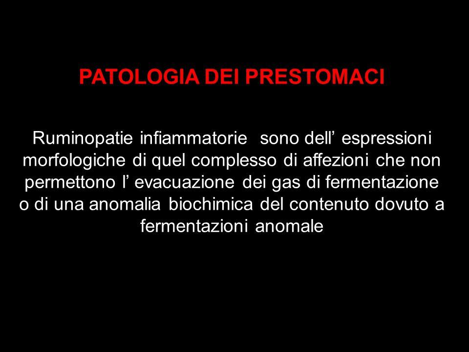 PATOLOGIA DEI PRESTOMACI