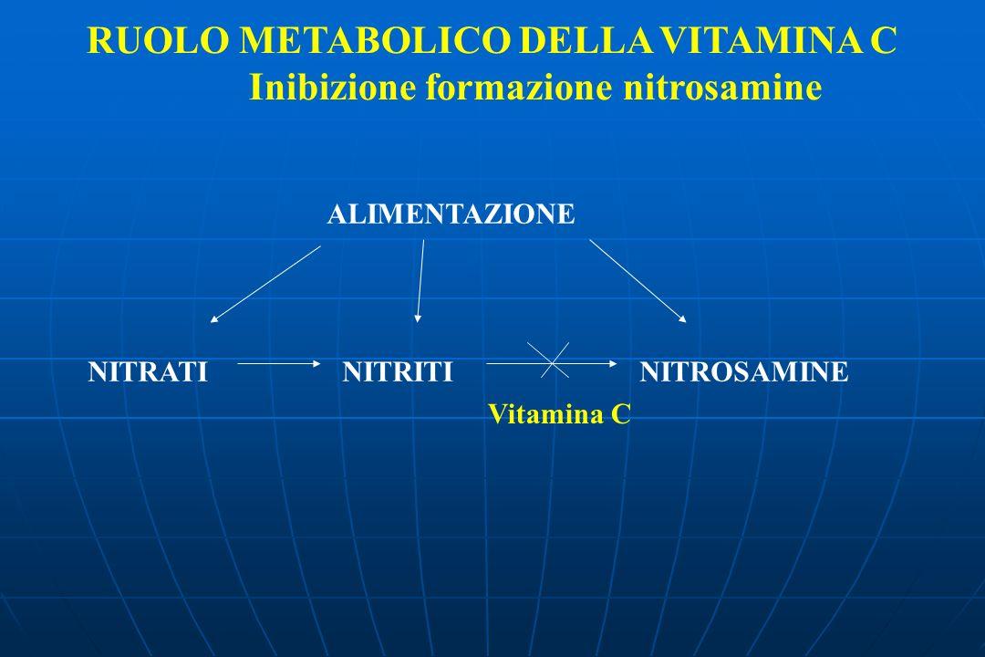 RUOLO METABOLICO DELLA VITAMINA C Inibizione formazione nitrosamine