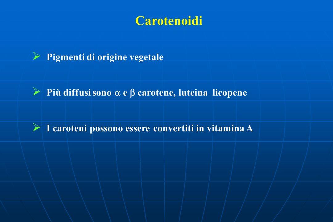 Carotenoidi Pigmenti di origine vegetale