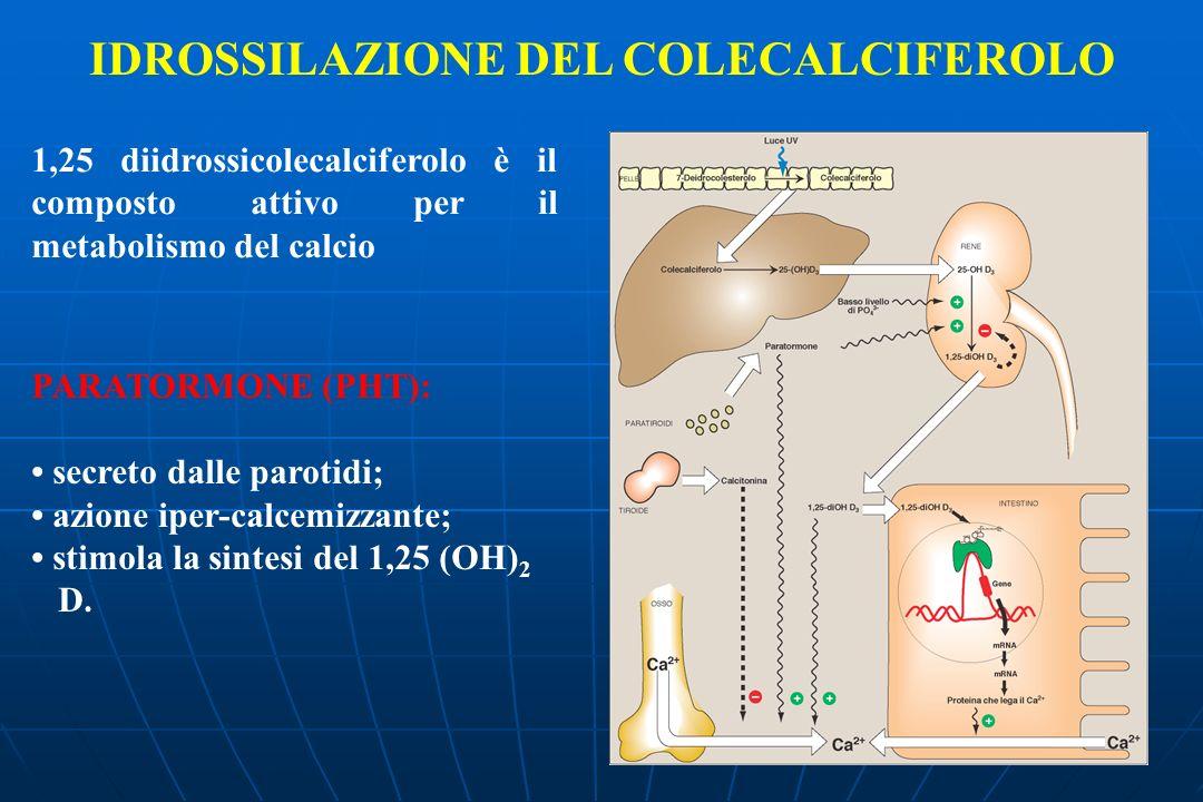 IDROSSILAZIONE DEL COLECALCIFEROLO