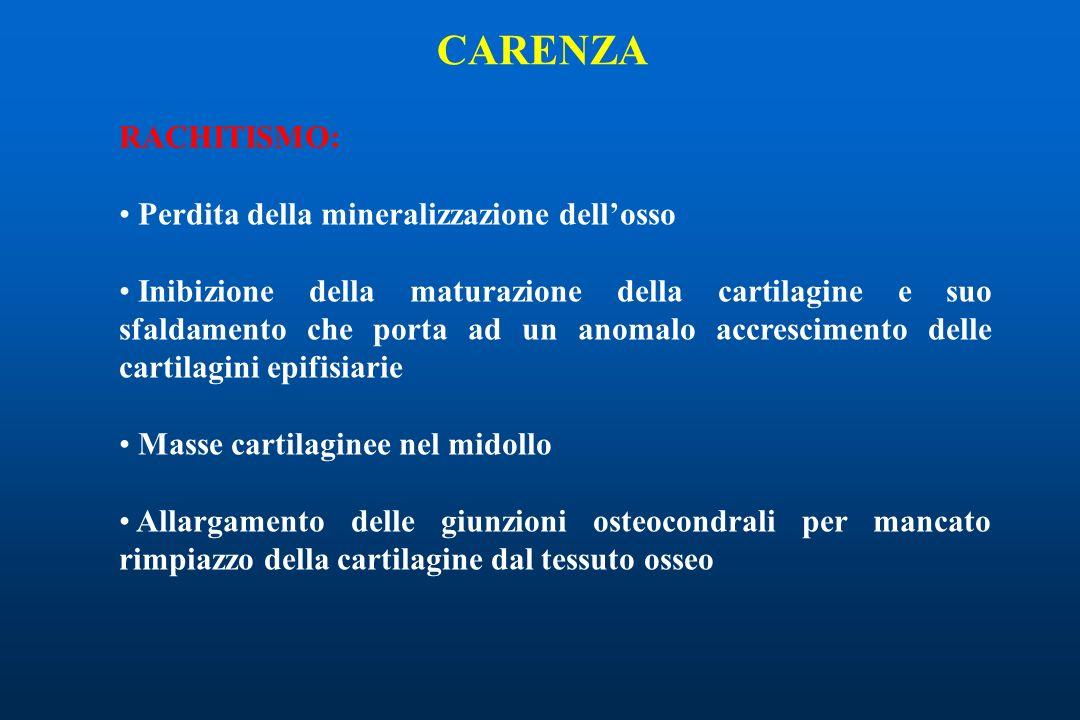 CARENZA RACHITISMO: Perdita della mineralizzazione dell'osso