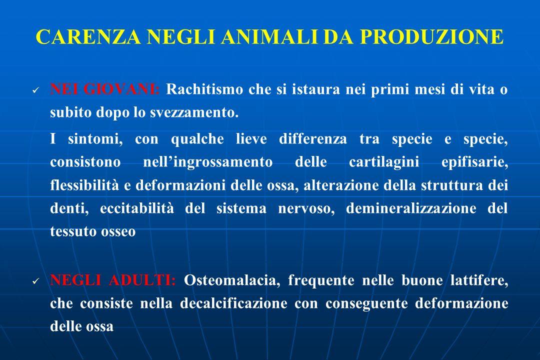 CARENZA NEGLI ANIMALI DA PRODUZIONE