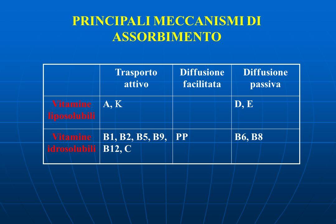 PRINCIPALI MECCANISMI DI ASSORBIMENTO