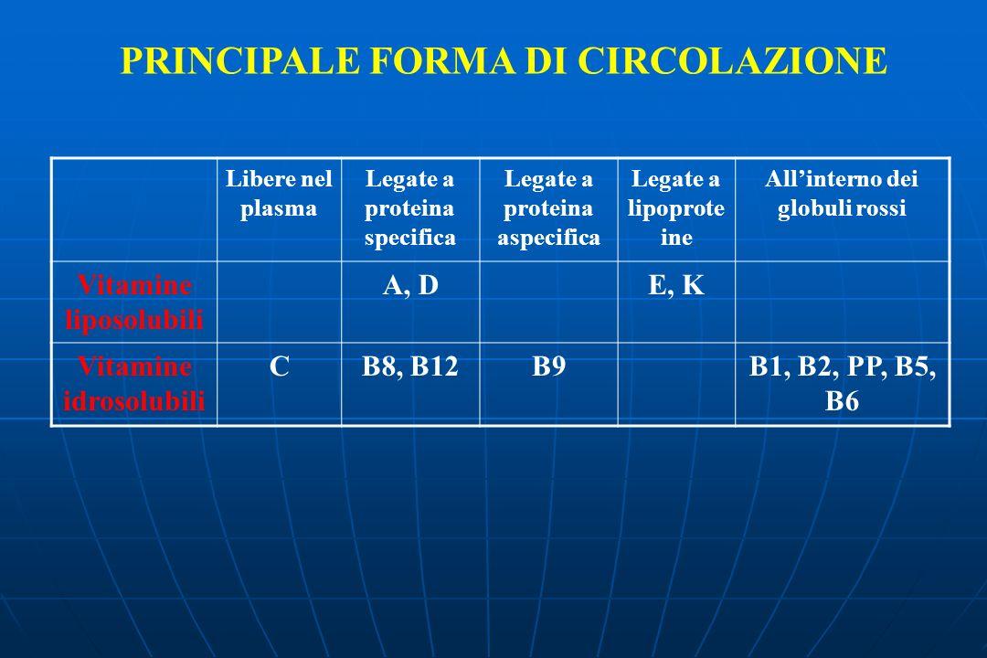 PRINCIPALE FORMA DI CIRCOLAZIONE