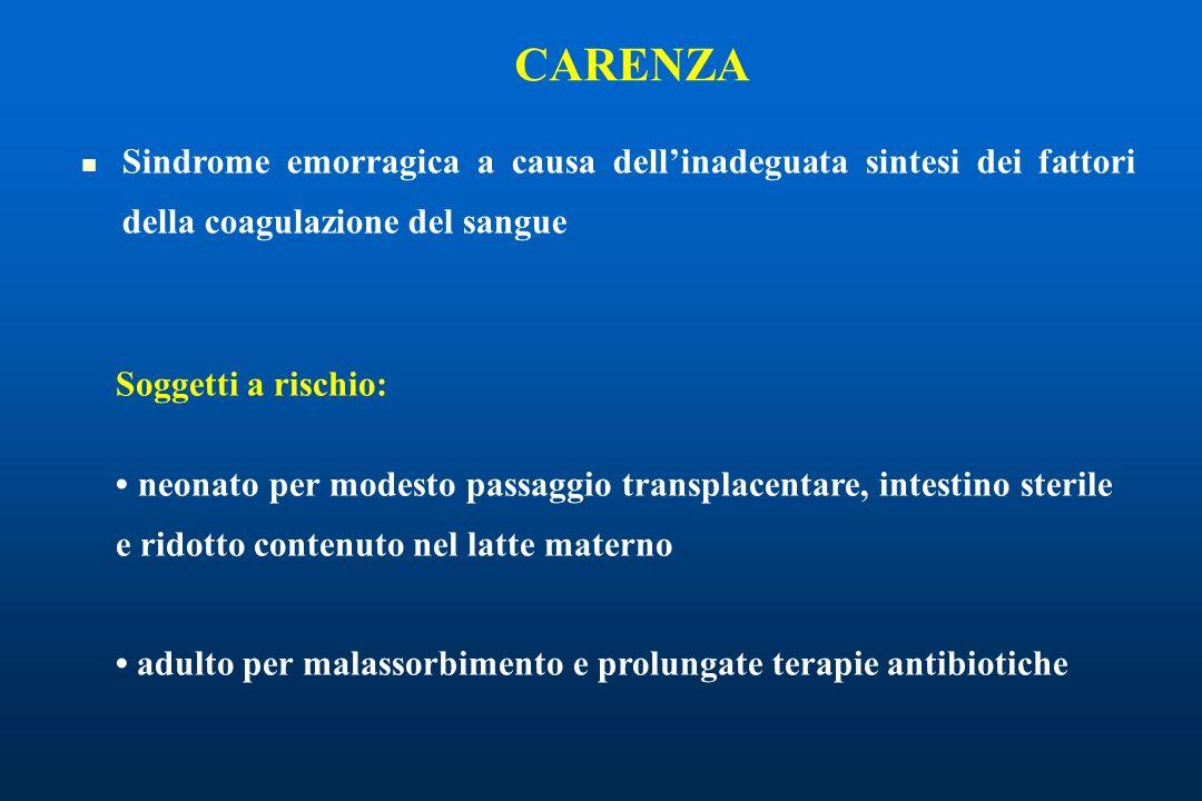CARENZA Sindrome emorragica a causa dell'inadeguata sintesi dei fattori della coagulazione del sangue.