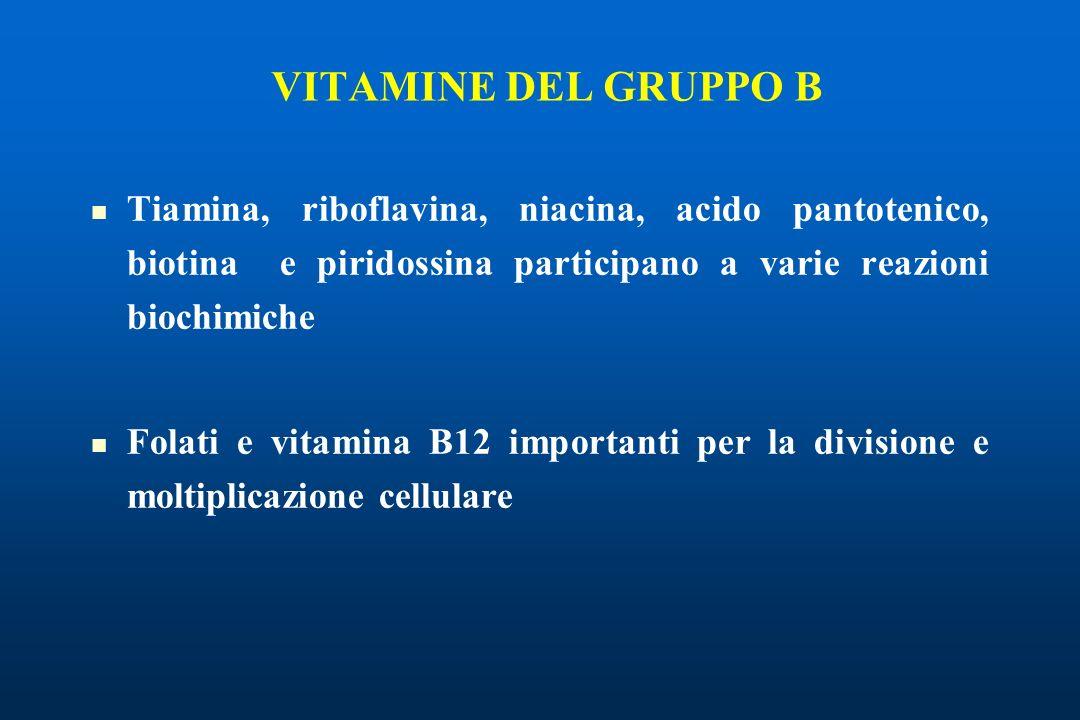 VITAMINE DEL GRUPPO B Tiamina, riboflavina, niacina, acido pantotenico, biotina e piridossina participano a varie reazioni biochimiche.