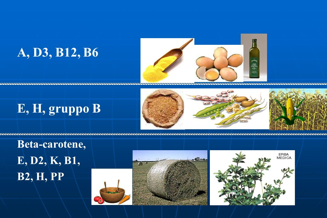 A, D3, B12, B6 E, H, gruppo B Beta-carotene, E, D2, K, B1, B2, H, PP
