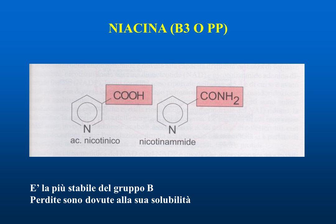 NIACINA (B3 O PP) E' la più stabile del gruppo B