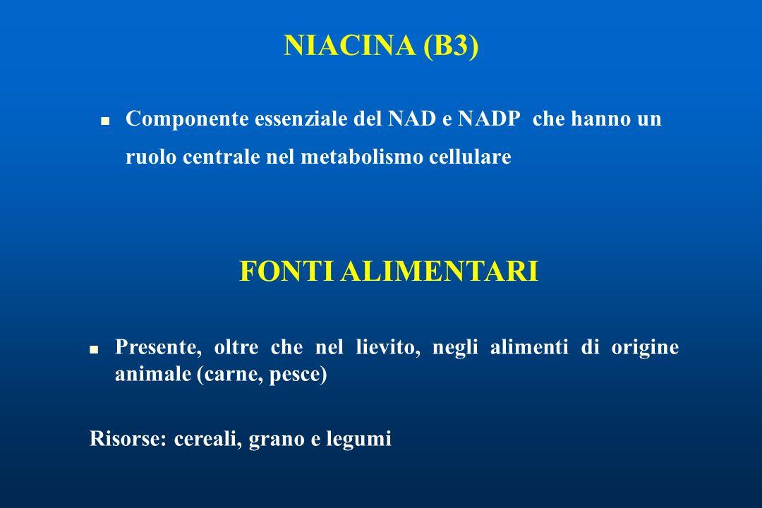 NIACINA (B3) FONTI ALIMENTARI
