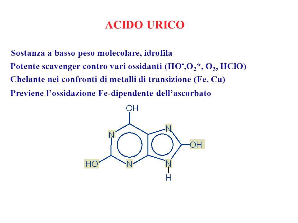ACIDO URICO Sostanza a basso peso molecolare, idrofila