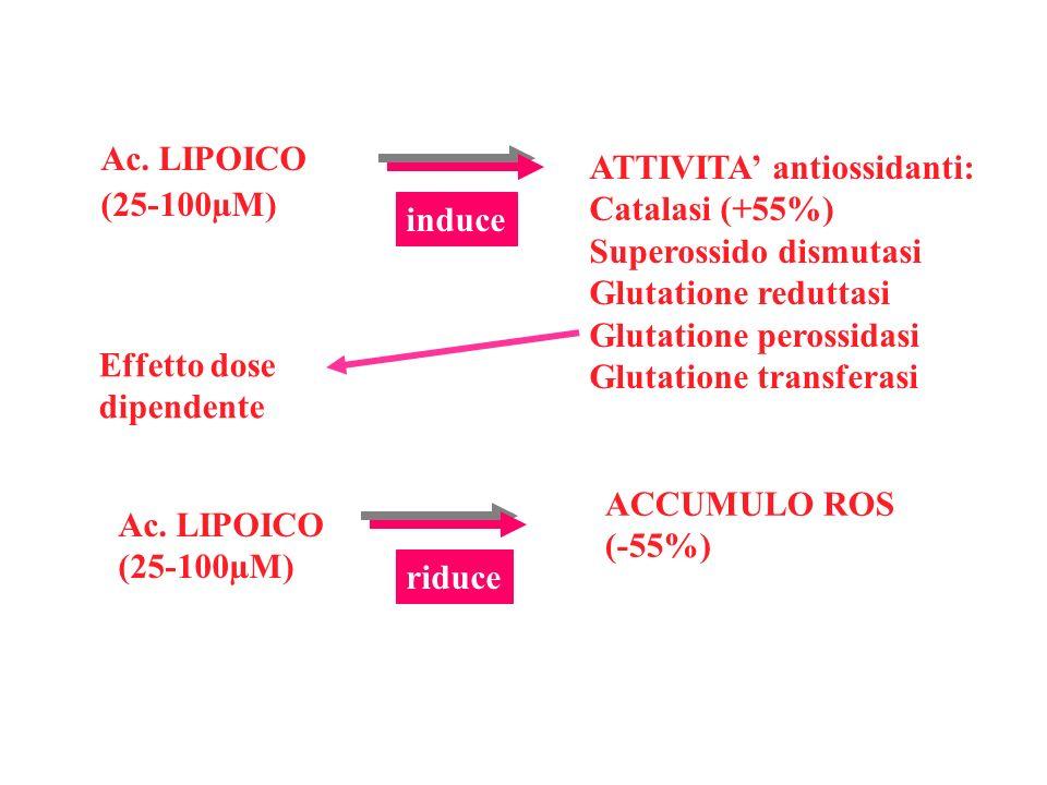 Ac. LIPOICO (25-100µM) ATTIVITA' antiossidanti: Catalasi (+55%) Superossido dismutasi. Glutatione reduttasi.