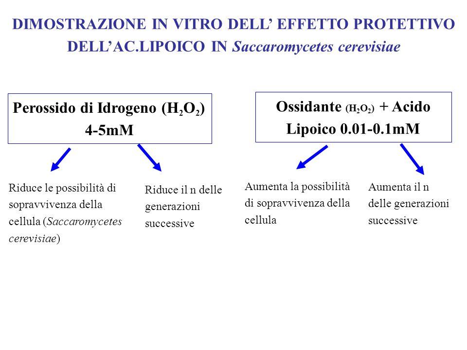 Ossidante (H2O2) + Acido Lipoico 0.01-0.1mM