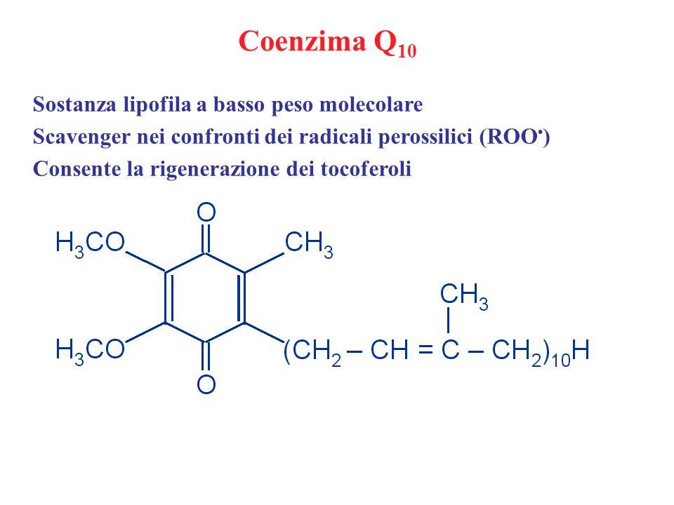 Coenzima Q10 Sostanza lipofila a basso peso molecolare
