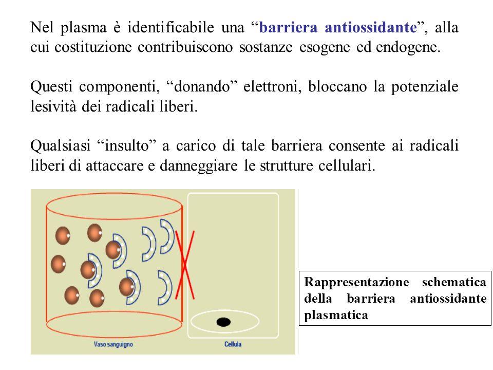 Nel plasma è identificabile una barriera antiossidante , alla cui costituzione contribuiscono sostanze esogene ed endogene.