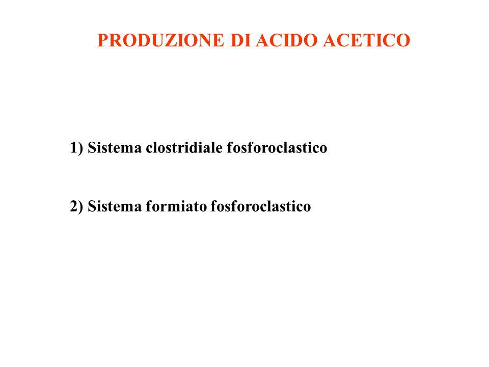 PRODUZIONE DI ACIDO ACETICO