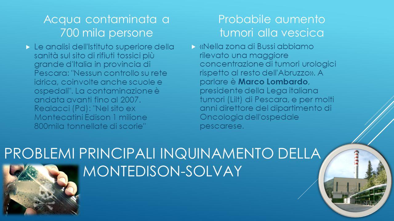 Problemi principali inquinamento della Montedison-solvay